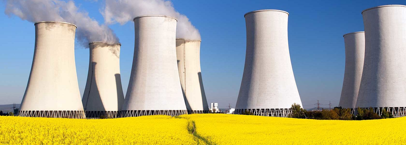 Nuclear energy not feasible for at least a decade