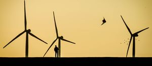 South African wind powers up: WoodMac