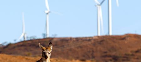 AGL's Silverton Wind Farm reaches full capacity