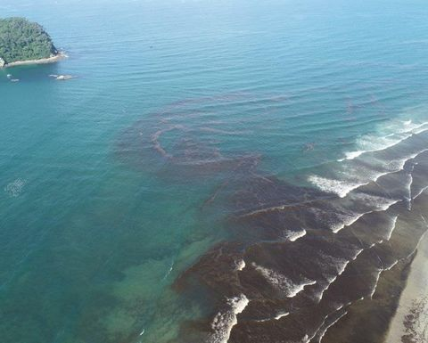 ENB Briefs: Talon Petroleum, Seaweed spill, Saturn Oil & Gas, and more