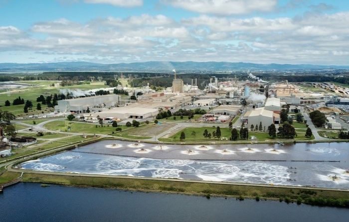Australian Paper commits to giant A$600m waste-to-energy project