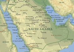 Middle East shrugs off downturn