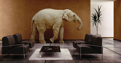 MinRes defers elephant in room