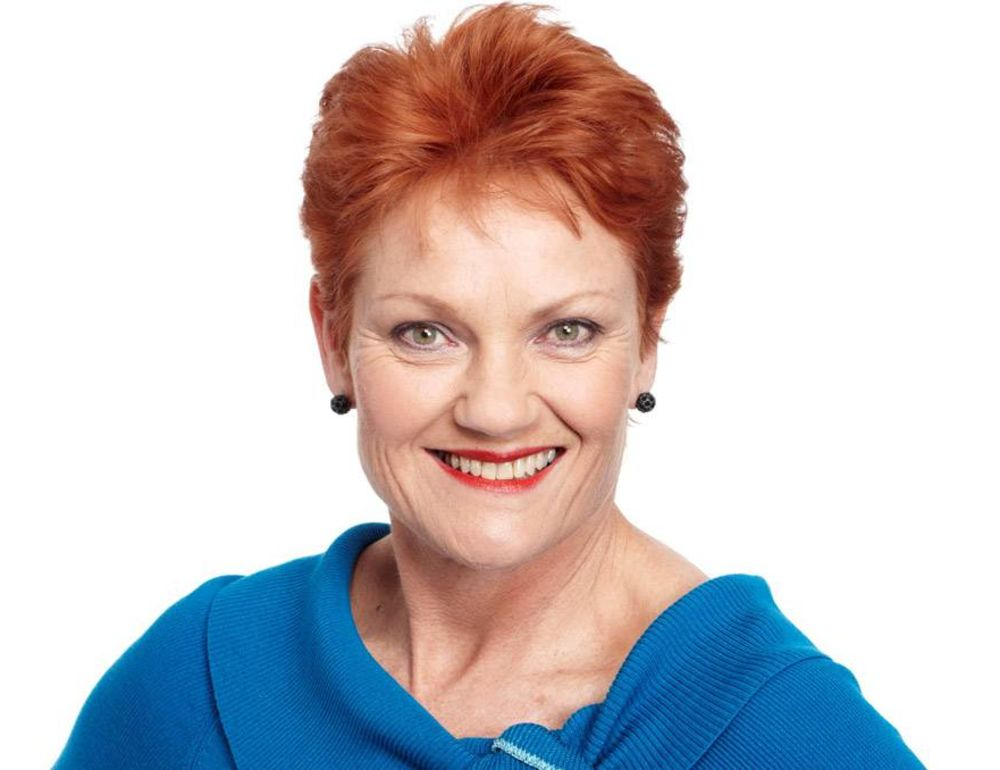 One Nation proposes energy overhaul