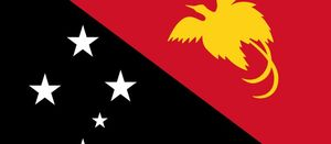 PNG LNG delays to hit EPC contractors: Rystad