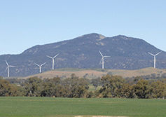 Victorian wind farm spins up