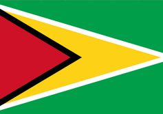 Oil and gas internationals moving into Guyana