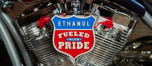 Choose ethanol, not petroleum reserves: US renewable body