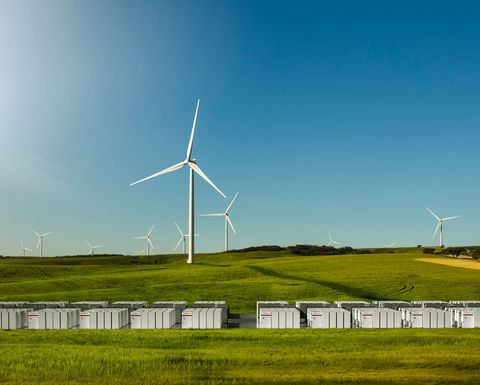Green energy bonanza marches on