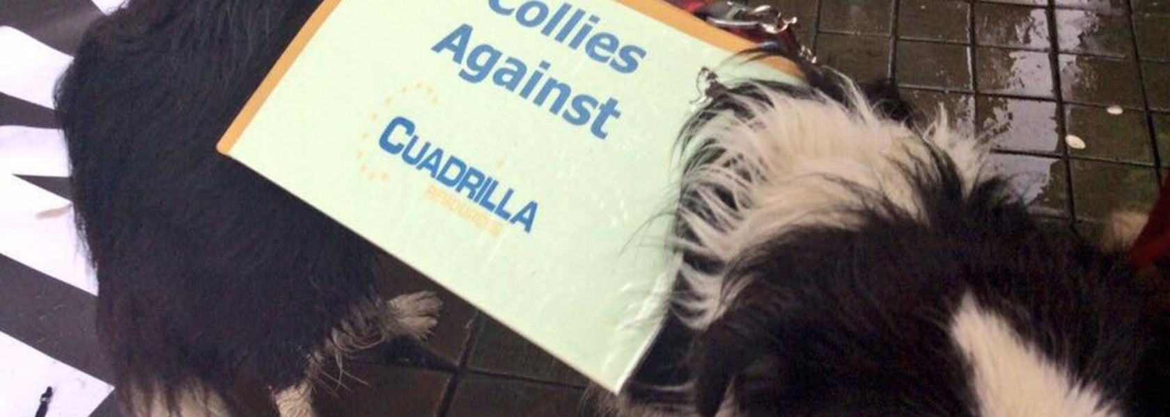 Cuadrilla claims knocked back by UK government