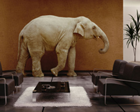 The elephant in G20's room