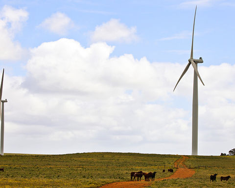 APA switches on wind farm