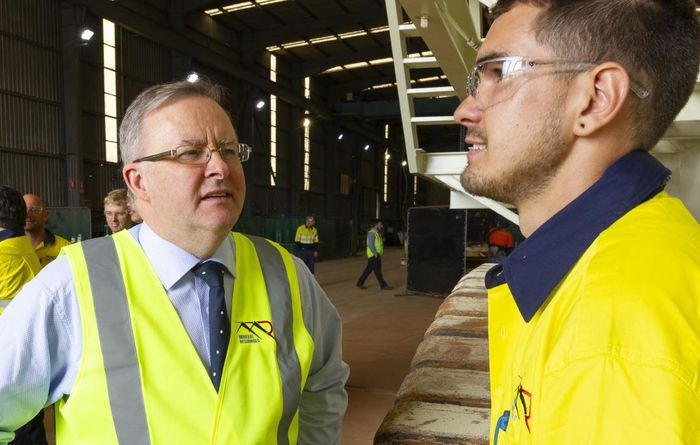 Albanese says we can have our coal and renewables too