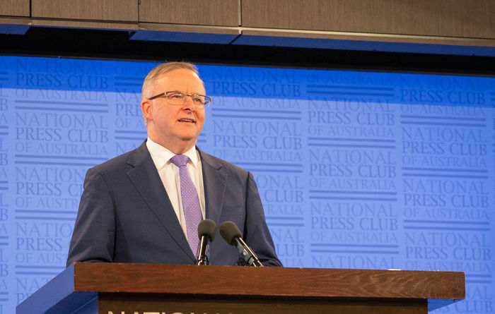 Albanese offers fig leaf on energy policy