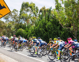 Santos Tour Down Under launches today