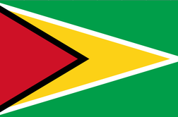Guyana halts oil auctions