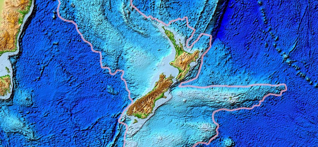 New Zealand launches inquiry into gas security