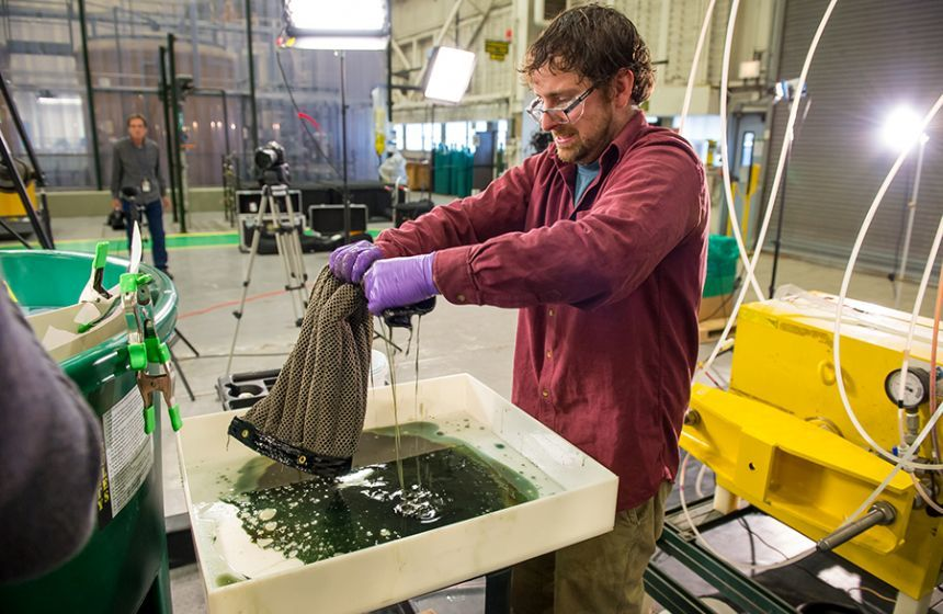 Sponge could revolutionise spill clean-up