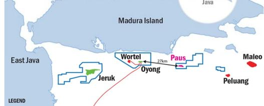 Cue extends Paus Biru-1 well