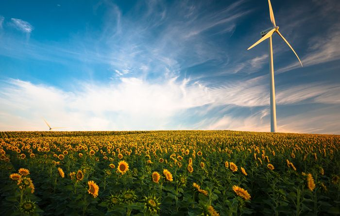 Tilt may sell SA windfarm
