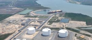 US LNG exports are down 50% this year so far