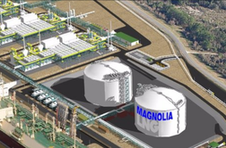 LNGL pins hopes on LNG-9 takeover