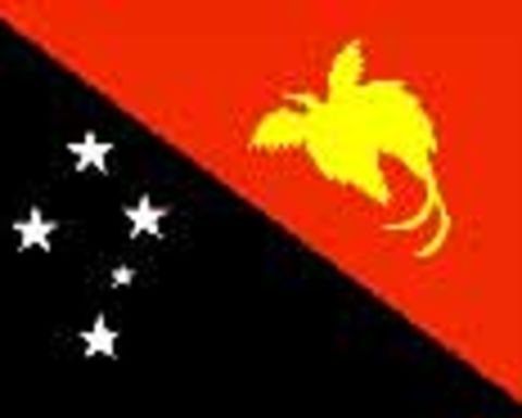 LNG major PNG policy driver